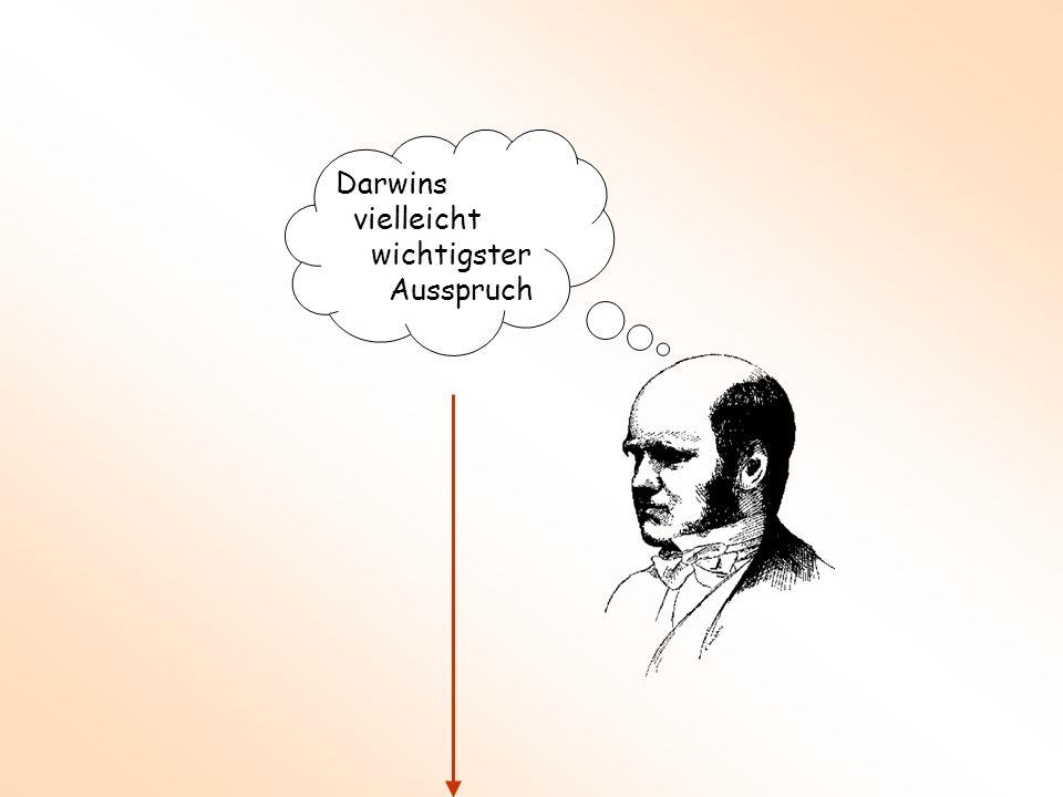 Darwins vielleicht wichtigster Ausspruch