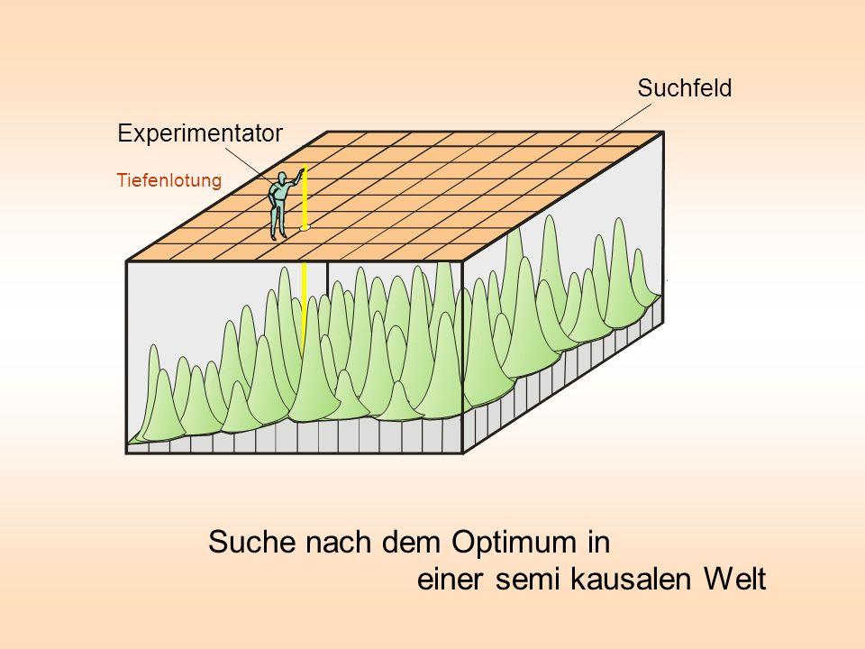 Experimentator Tiefenlotung Suchfeld Suche nach dem Optimum in einer semi kausalen Welt