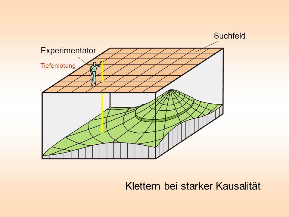 Tiefenlotung Experimentator Suchfeld Klettern bei starker Kausalität