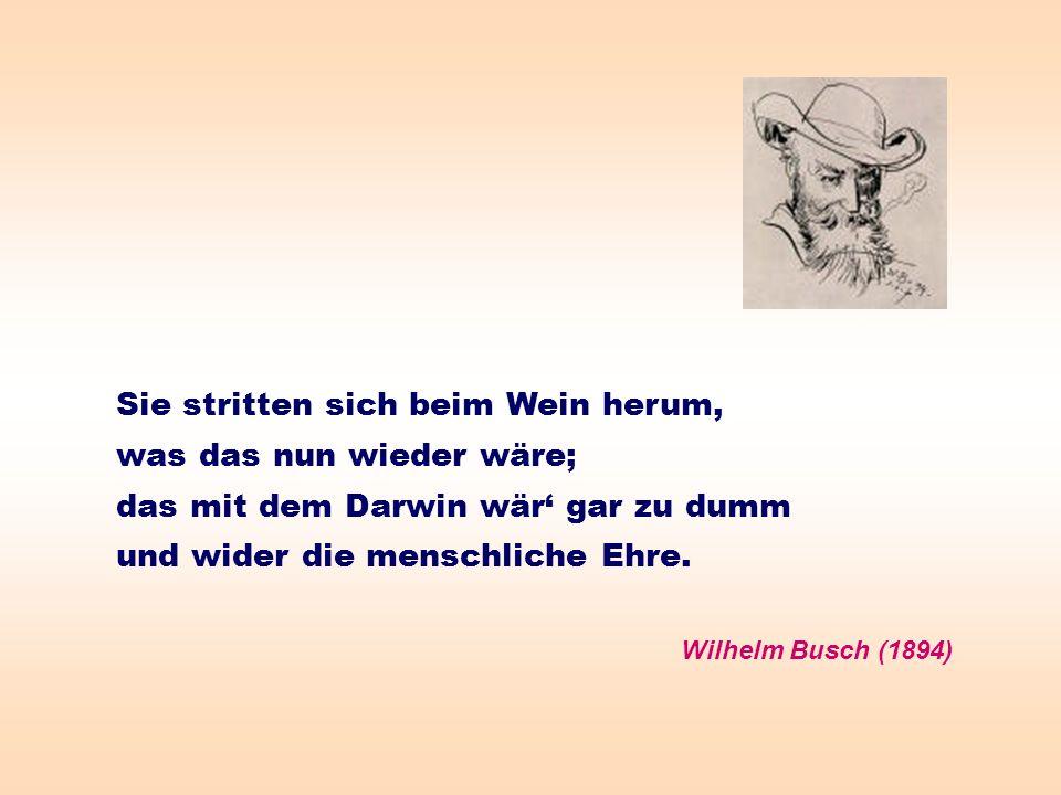 Sie stritten sich beim Wein herum, was das nun wieder wäre; das mit dem Darwin wär gar zu dumm und wider die menschliche Ehre. Wilhelm Busch (1894)