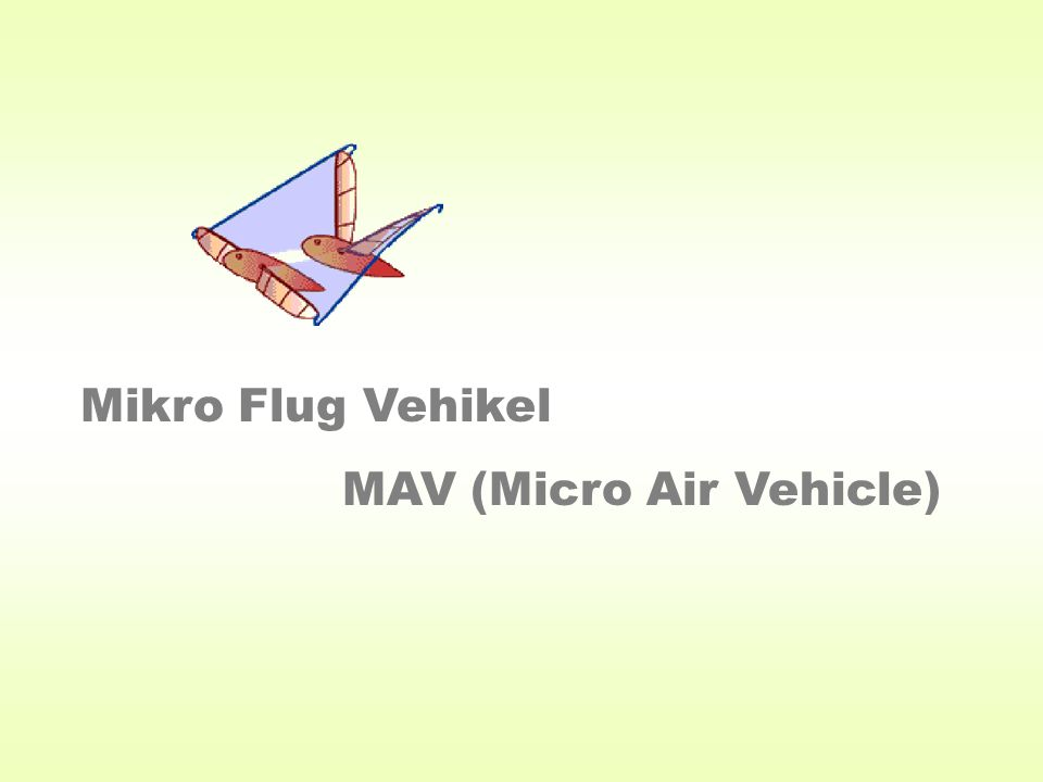 Mikro Flug Vehikel MAV (Micro Air Vehicle)