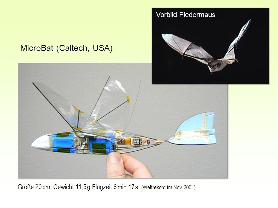 MicroBat (Caltech, USA) Größe 20 cm, Gewicht 11,5 g Flugzeit 6 min 17 s (Weltrekord im Nov. 2001) Vorbild Fledermaus