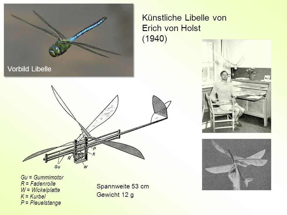 Künstliche Libelle von Erich von Holst (1940) Spannweite 53 cm Gewicht 12 g Gu = Gummimotor R = Fadenrolle W = Wickelplatte K = Kurbel P = Pleuelstang