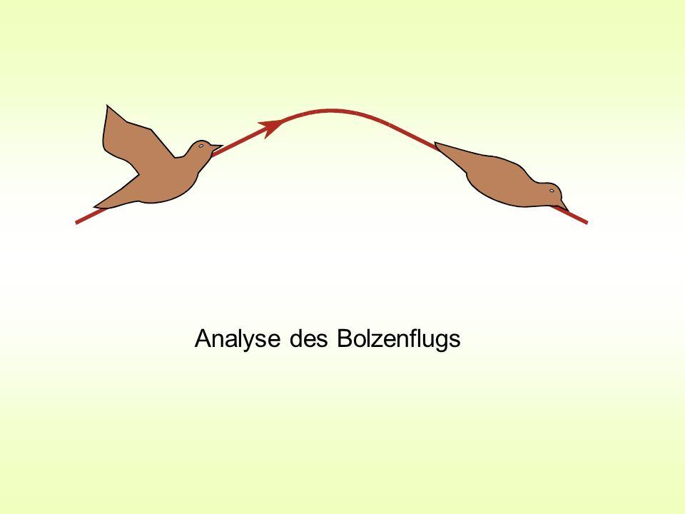 Analyse des Bolzenflugs