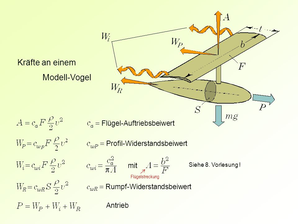 = Flügel-Auftriebsbeiwert = Profil-Widerstandsbeiwert Kräfte an einem Modell-Vogel = Rumpf-Widerstandsbeiwert mit Siehe 8. Vorlesung ! Antrieb Flügels