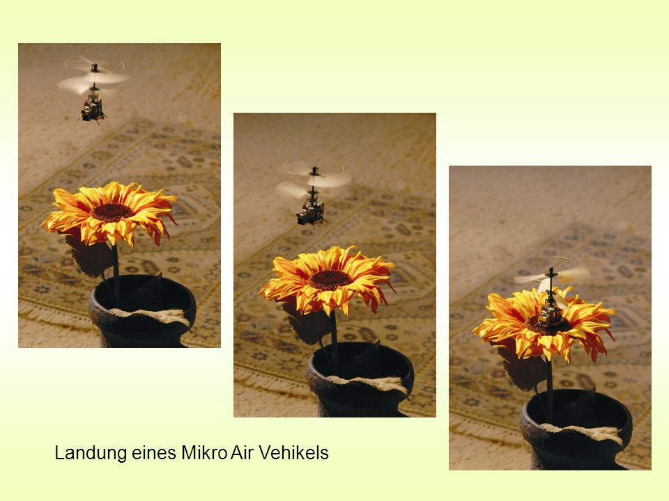 Landung eines Mikro Air Vehikels