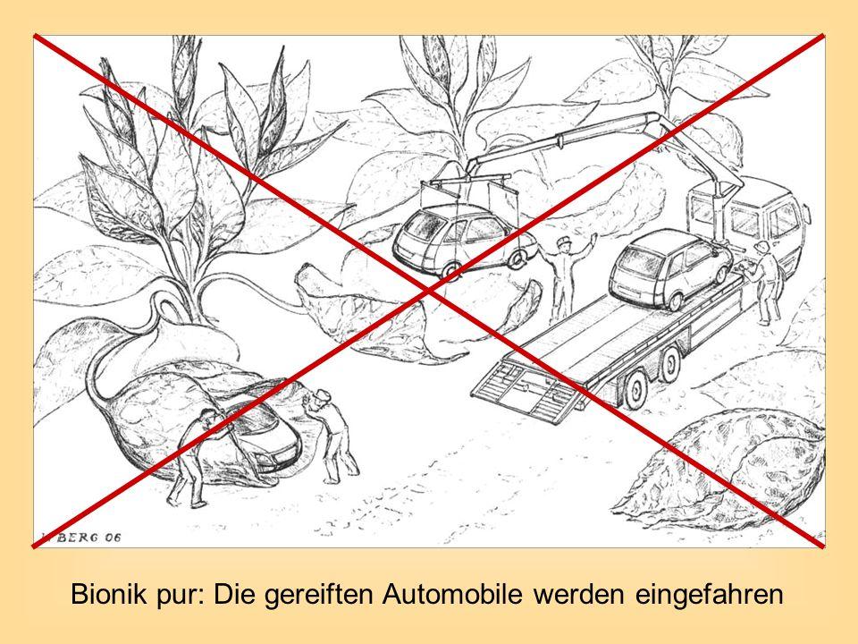 Bionik pur: Die gereiften Automobile werden eingefahren