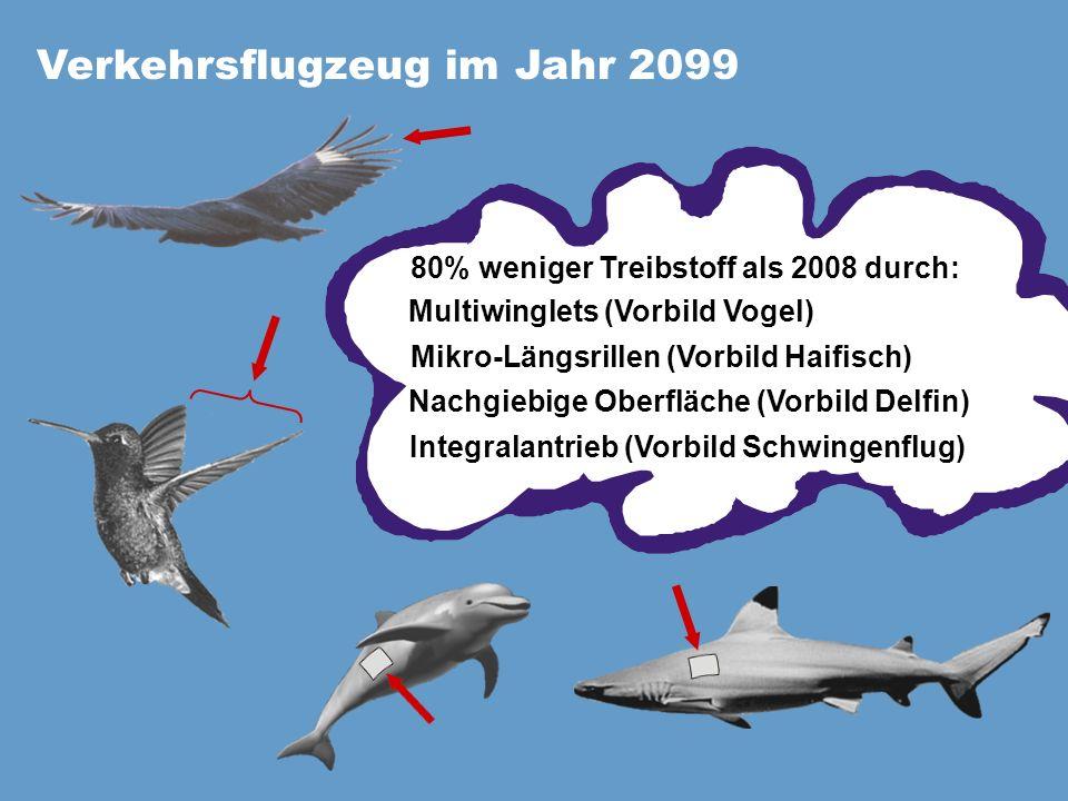 Verkehrsflugzeug im Jahr 2099 80% weniger Treibstoff als 2008 durch: Multiwinglets (Vorbild Vogel) Mikro-Längsrillen (Vorbild Haifisch) Integralantrieb (Vorbild Schwingenflug) Nachgiebige Oberfläche (Vorbild Delfin)