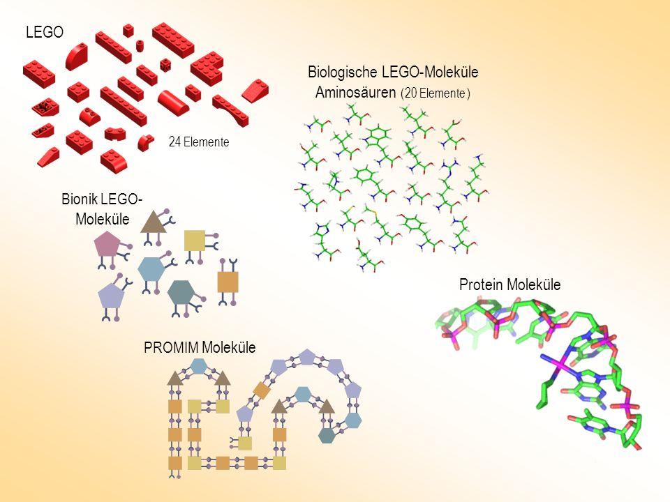 LEGO Biologische LEGO-Moleküle Aminosäuren ( 20 Elemente ) Protein Moleküle PROMIM Moleküle Bionik LEGO - Moleküle 24 Elemente