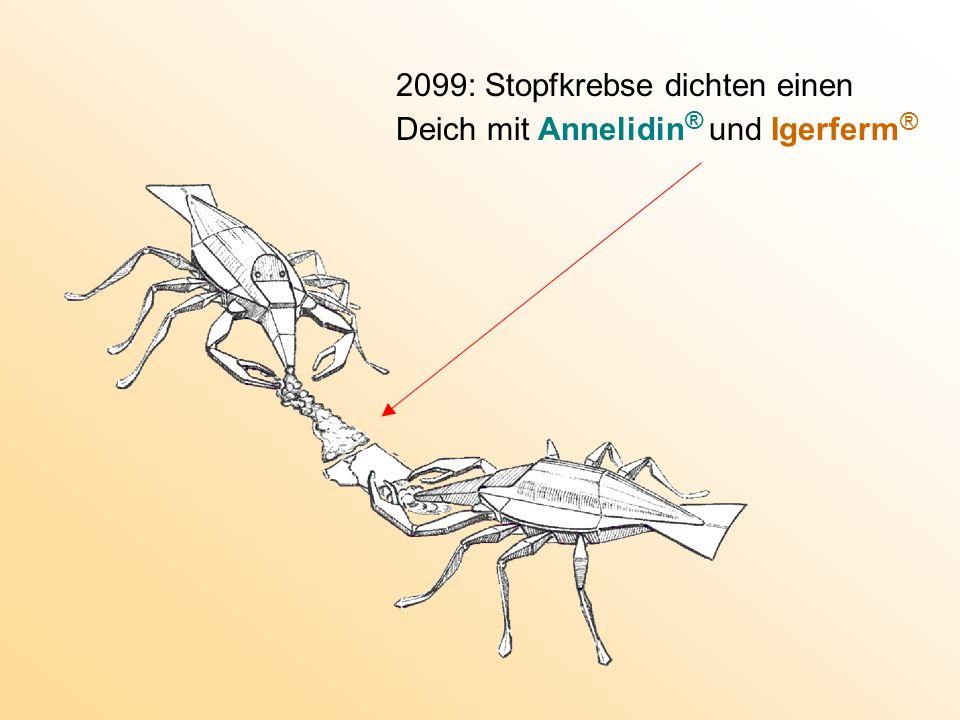 2099: Stopfkrebse dichten einen Deich mit Annelidin ® und Igerferm ®