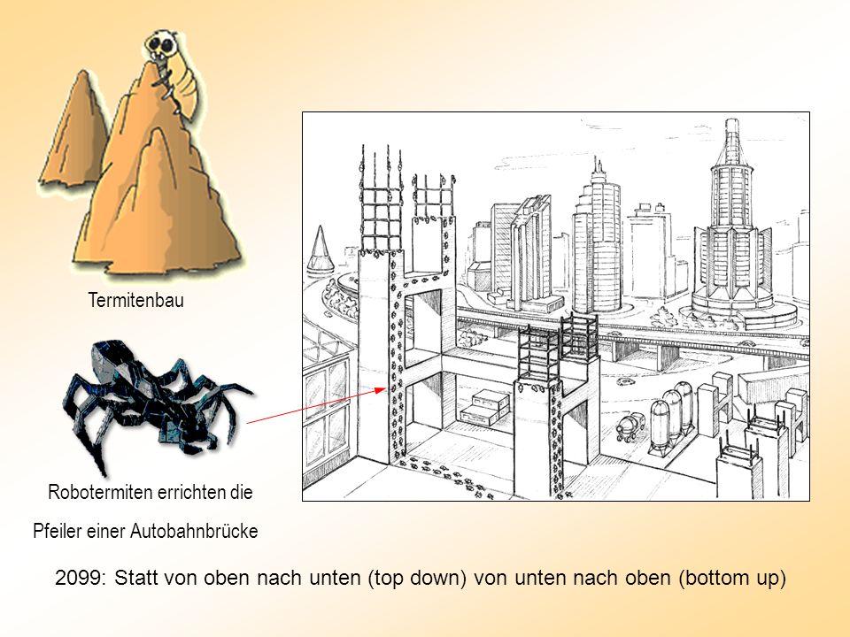Robotermiten errichten die Pfeiler einer Autobahnbrücke Termitenbau 2099: Statt von oben nach unten (top down) von unten nach oben (bottom up)
