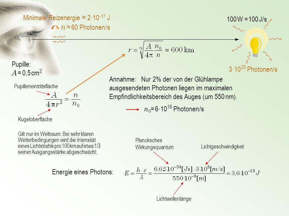100 W = 100 J/s n 60 Photonen /s Pupille: A = 0,5 cm 2 n 0 = 6·10 18 Photonen /s Energie eines Photons: Plancksches Wirkungsquantum Lichtwellenlänge L