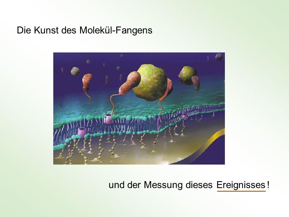 Die Kunst des Molekül-Fangens und der Messung dieses Ereignisses !