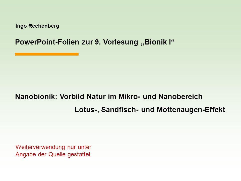 Ingo Rechenberg PowerPoint-Folien zur 9. Vorlesung Bionik I Nanobionik: Vorbild Natur im Mikro- und Nanobereich Lotus-, Sandfisch- und Mottenaugen-Eff
