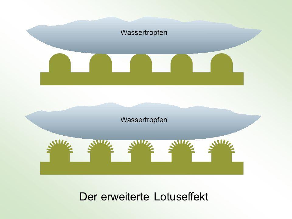 Der erweiterte Lotuseffekt Wassertropfen
