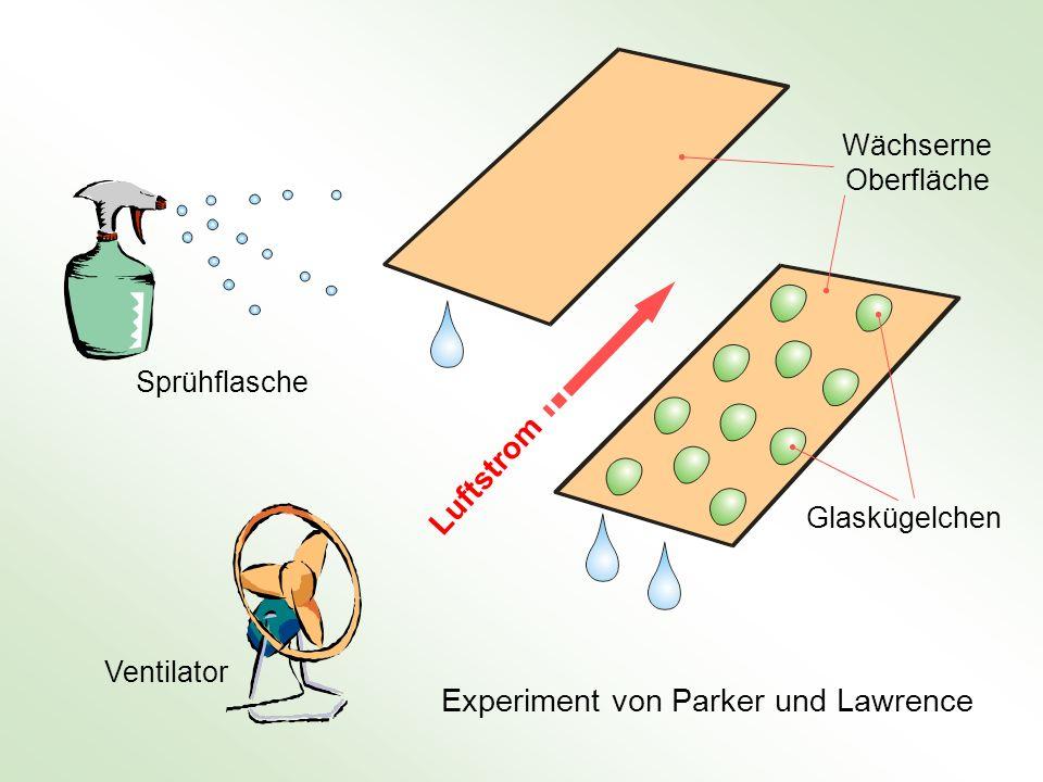 Luftstrom Experiment von Parker und Lawrence Sprühflasche Ventilator Wächserne Oberfläche Glaskügelchen