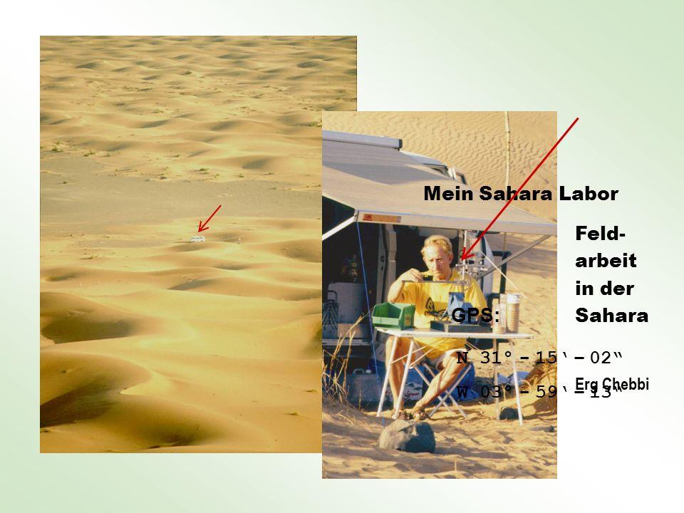Feld- arbeit in der Sahara Erg Chebbi Mein Sahara Labor GPS: N 31° - 15 – 02 W 03° - 59 – 13