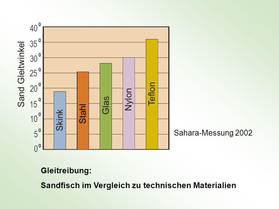 Gleitreibung: Sandfisch im Vergleich zu technischen Materialien Sahara-Messung 2002 0 5 0 10 0 15 0 20 0 S k i n k Sand Gleitwinkel 25 0 30 0 35 0 40