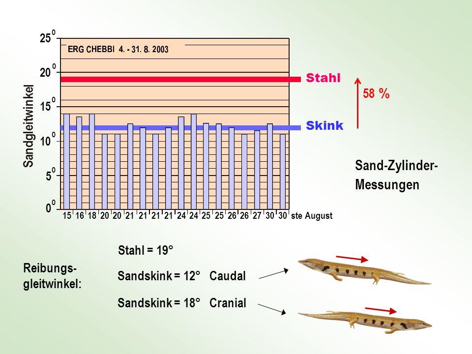 Reibungs- gleitwinkel: Stahl = 19° Sandskink = 12° Caudal Sandskink = 18° Cranial Sand-Zylinder- Messungen 58 % Skink Stahl 1516 1820 21 24 25 26 2730