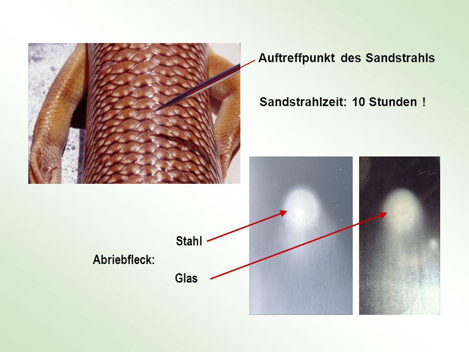 Auftreffpunkt des Sandstrahls Sandstrahlzeit: 10 Stunden ! Abriebfleck: Stahl Glas