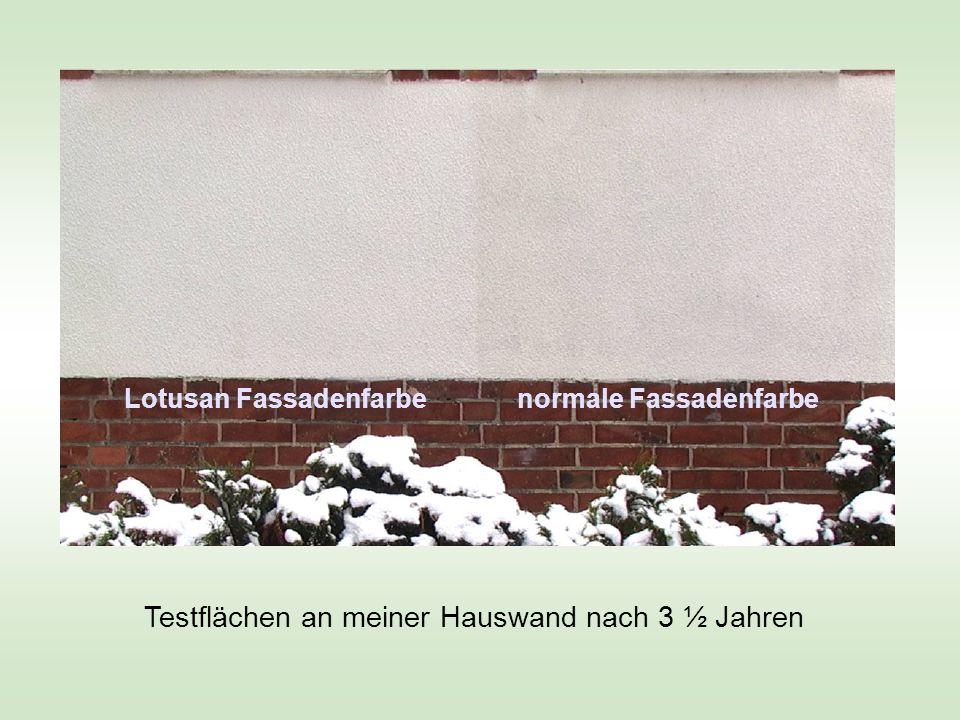 Testflächen an meiner Hauswand nach 3 ½ Jahren Lotusan Fassadenfarbe normale Fassadenfarbe