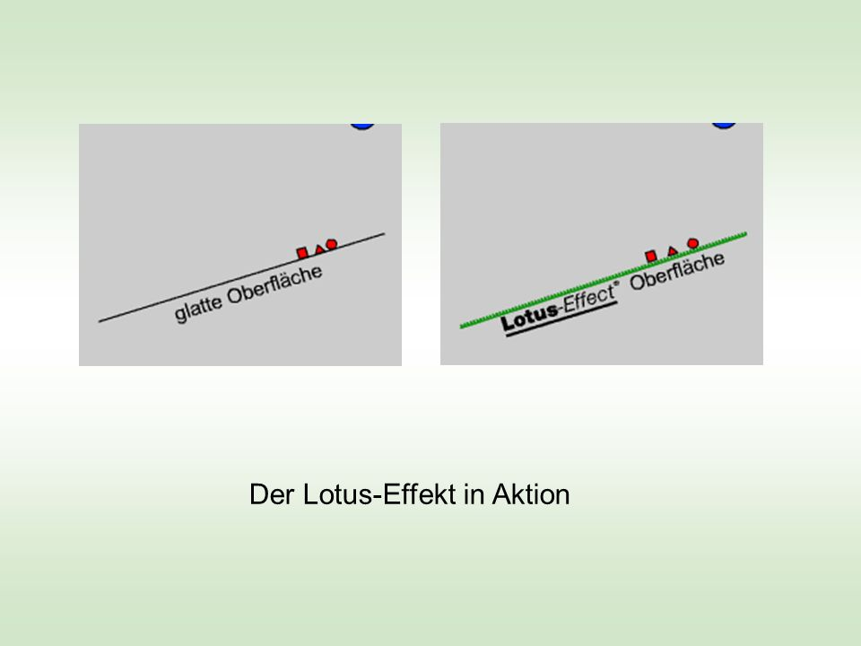 Young-Formel: Oberflächenspannung und Benetzungswinkel Adhäsion > Kohäsion Adhäsion < Kohäsion Adhäsion << Kohäsion