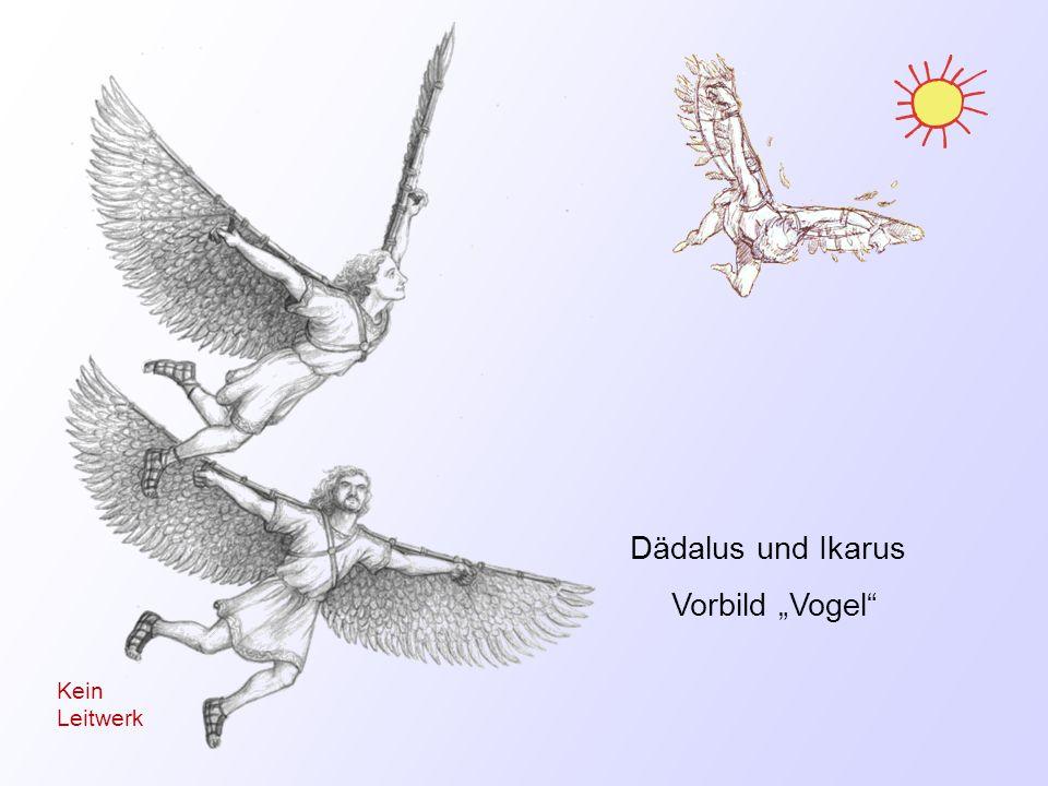 Dädalus und Ikarus Vorbild Vogel Kein Leitwerk