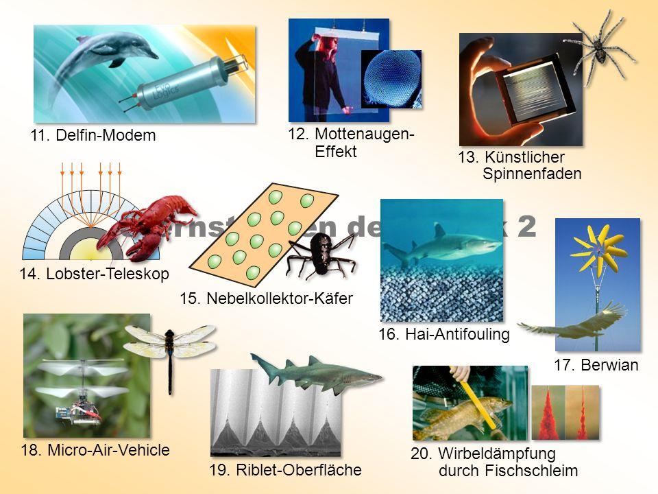 Sternstunden der Bionik 2 11. Delfin-Modem 14. Lobster-Teleskop 18. Micro-Air-Vehicle 19. Riblet-Oberfläche 15. Nebelkollektor-Käfer 16. Hai-Antifouli