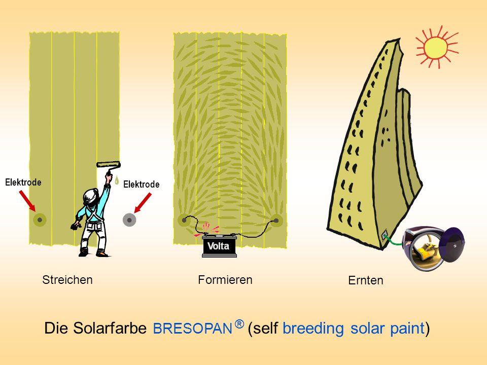 Streichen Ernten Formieren Elektrode Die Solarfarbe BRESOPAN ® (self breeding solar paint)