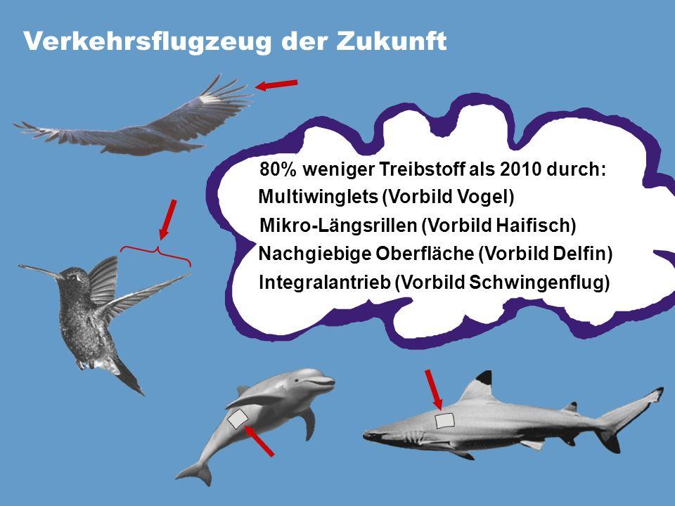 Verkehrsflugzeug der Zukunft 80% weniger Treibstoff als 2010 durch: Multiwinglets (Vorbild Vogel) Mikro-Längsrillen (Vorbild Haifisch) Integralantrieb