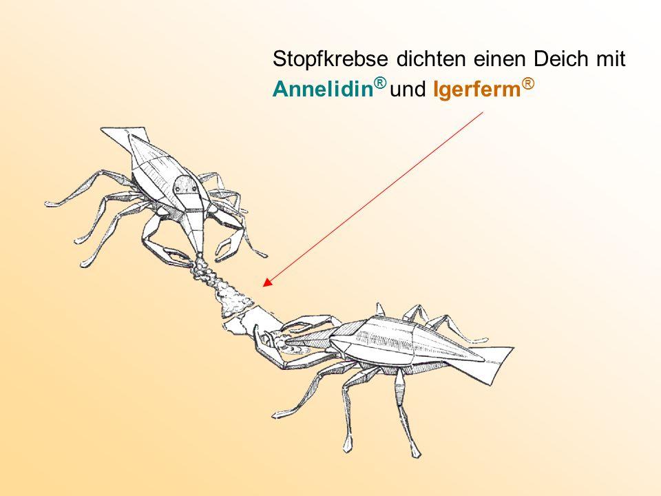Stopfkrebse dichten einen Deich mit Annelidin ® und Igerferm ®