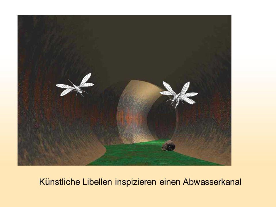 Künstliche Libellen inspizieren einen Abwasserkanal
