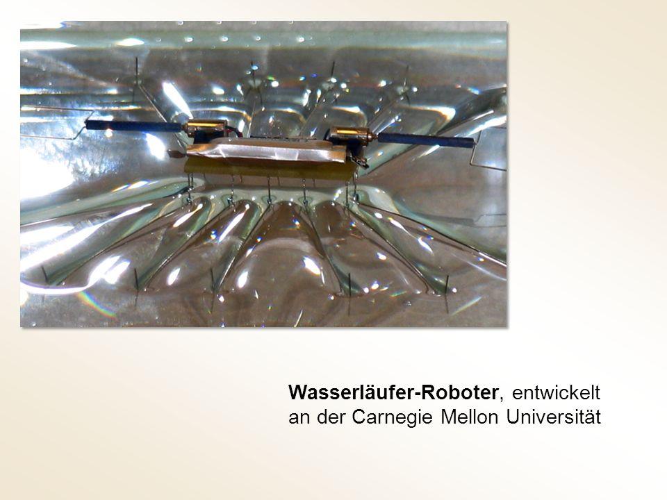 Wasserläufer-Roboter, entwickelt an der Carnegie Mellon Universität