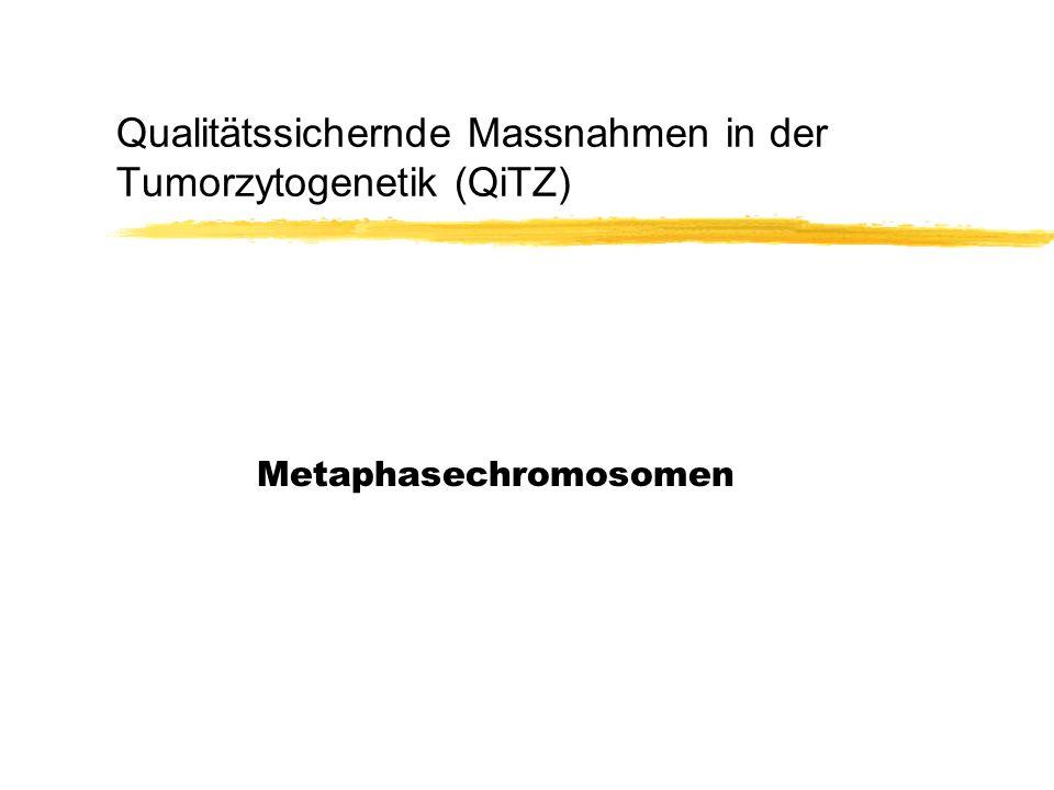 Qualitätssichernde Massnahmen in der Tumorzytogenetik (QiTZ) Metaphasechromosomen
