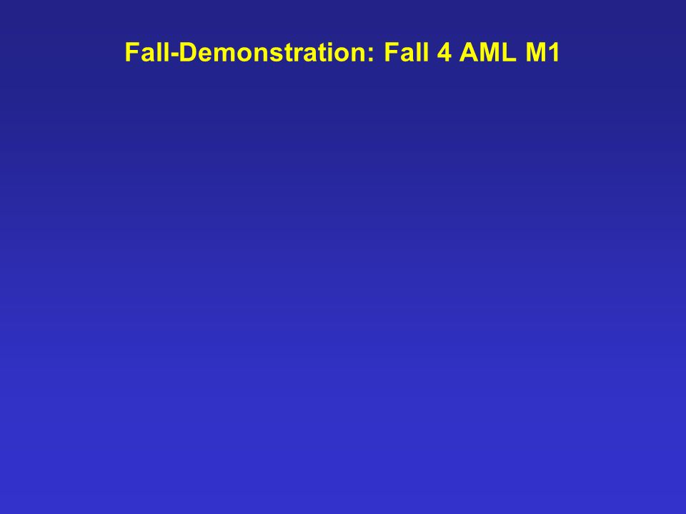Fall-Demonstration: Fall 4 AML M1