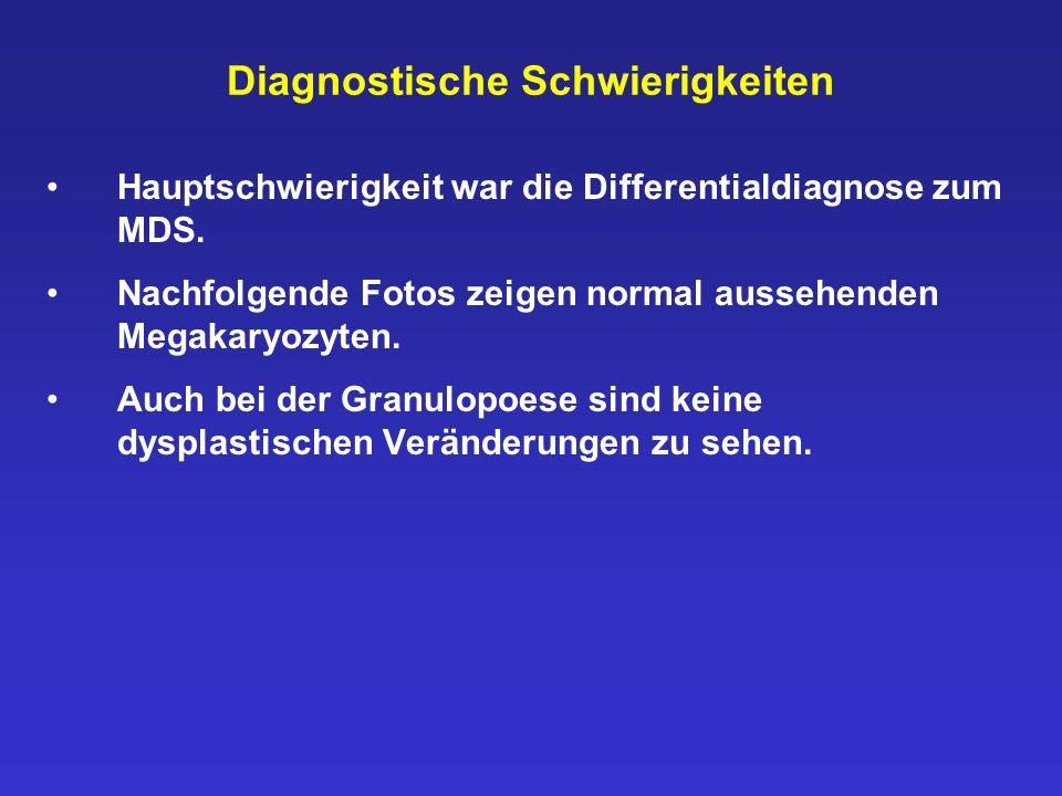 Diagnostische Schwierigkeiten Hauptschwierigkeit war die Differentialdiagnose zum MDS. Nachfolgende Fotos zeigen normal aussehenden Megakaryozyten. Au