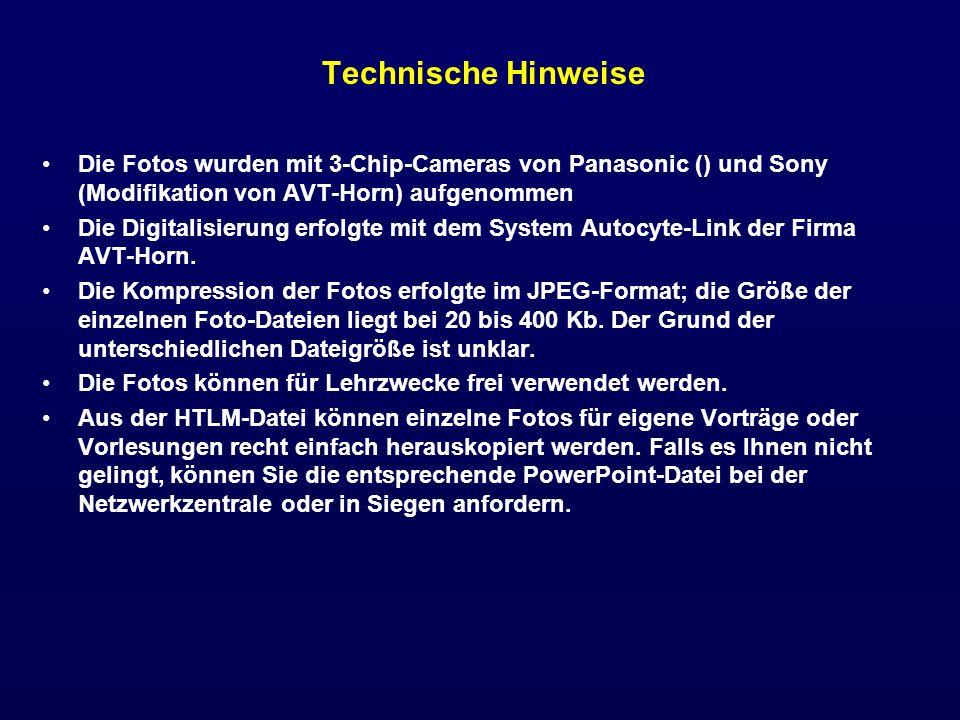 Technische Hinweise Die Fotos wurden mit 3-Chip-Cameras von Panasonic () und Sony (Modifikation von AVT-Horn) aufgenommen Die Digitalisierung erfolgte