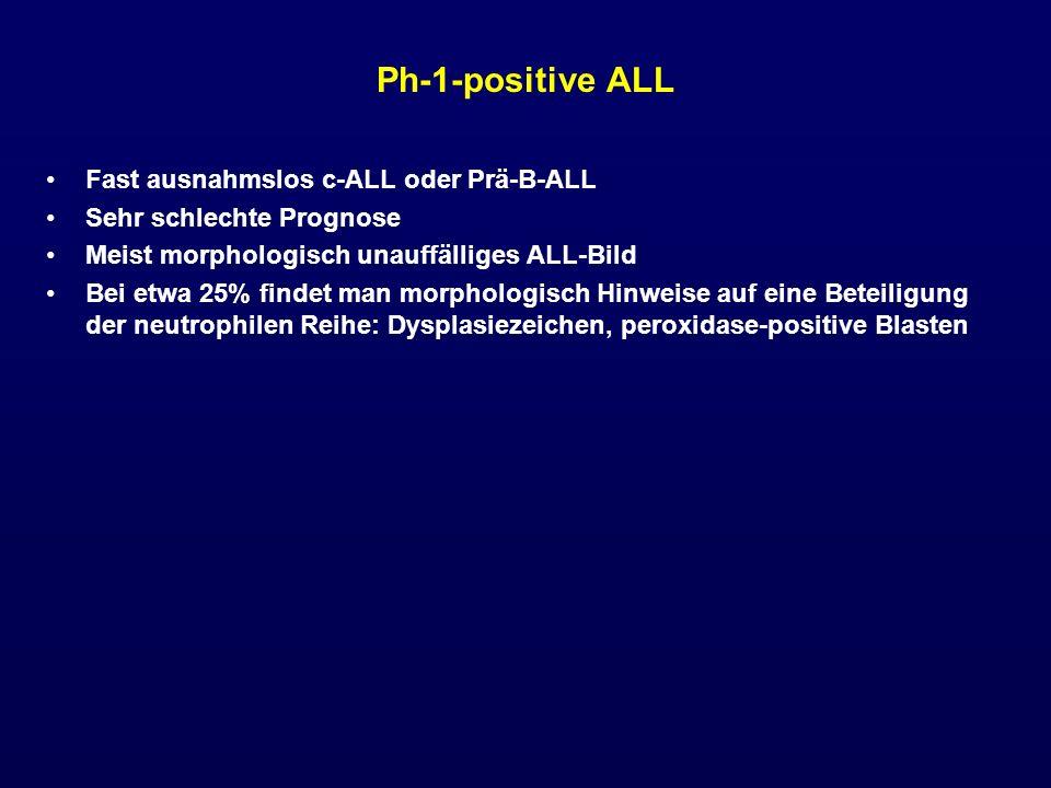 Ph-1-positive ALL Fast ausnahmslos c-ALL oder Prä-B-ALL Sehr schlechte Prognose Meist morphologisch unauffälliges ALL-Bild Bei etwa 25% findet man mor