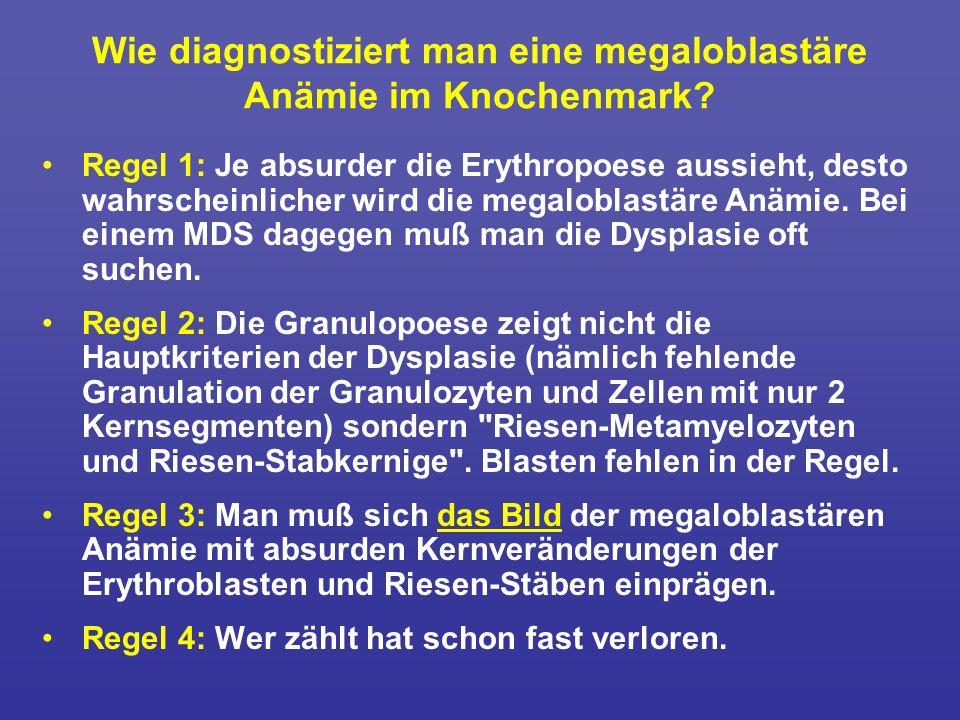 Wie diagnostiziert man eine megaloblastäre Anämie im Knochenmark? Regel 1: Je absurder die Erythropoese aussieht, desto wahrscheinlicher wird die mega