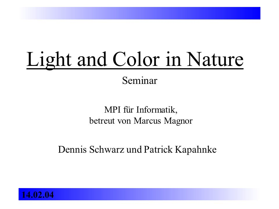 Light and Color in Nature Dennis Schwarz und Patrick Kapahnke Seminar MPI für Informatik, betreut von Marcus Magnor 14.02.04
