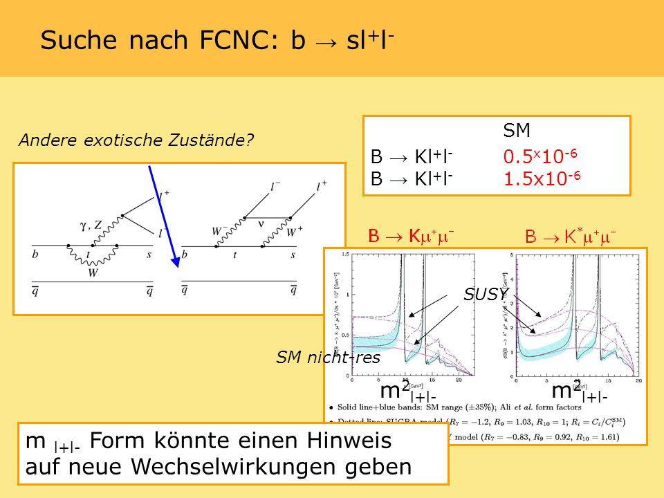 Suche nach FCNC: b sl + l - SM B Kl + l - 0.5 x 10 -6 B Kl + l - 1.5x10 -6 Andere exotische Zustände.