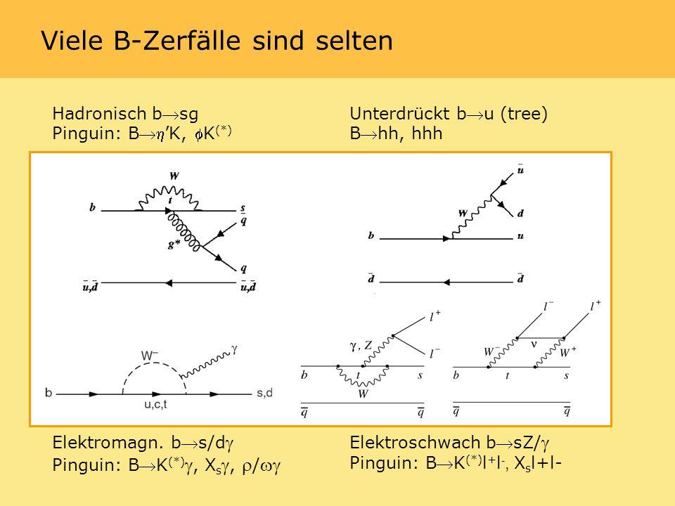 Viele B-Zerfälle sind selten Hadronisch bsg Pinguin: BK, K (*) Unterdrückt bu (tree) Bhh, hhh Elektromagn.