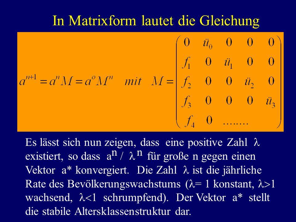 In Matrixform lautet die Gleichung s lässt sich nun zeigen, dass eine positive Zahl existiert, so dass a / für große n gegen einen Vektor a* konvergie