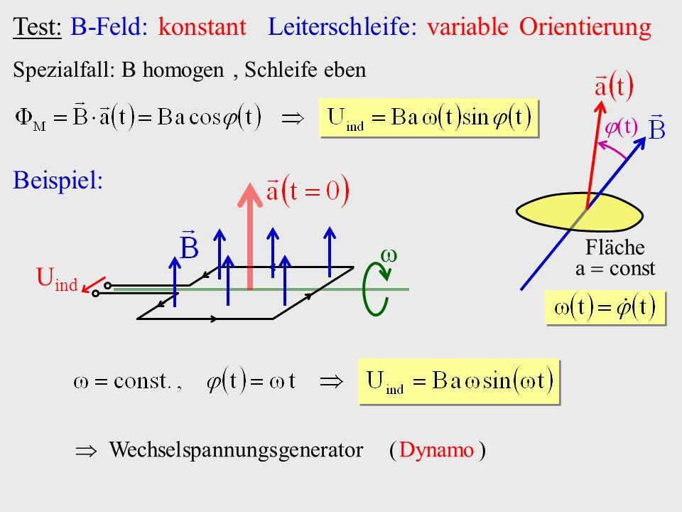 Test: B-Feld: konstant Leiterschleife: variable Orientierung Spezialfall: B homogen, Schleife eben Fläche a const t Beispiel: U ind Wechselspannungsge