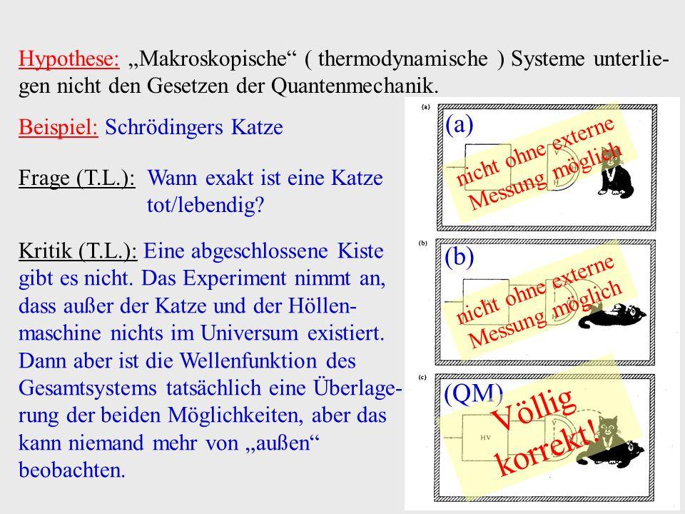 Hypothese: Makroskopische ( thermodynamische ) Systeme unterlie- gen nicht den Gesetzen der Quantenmechanik. Beispiel: Schrödingers Katze Frage (T.L.)