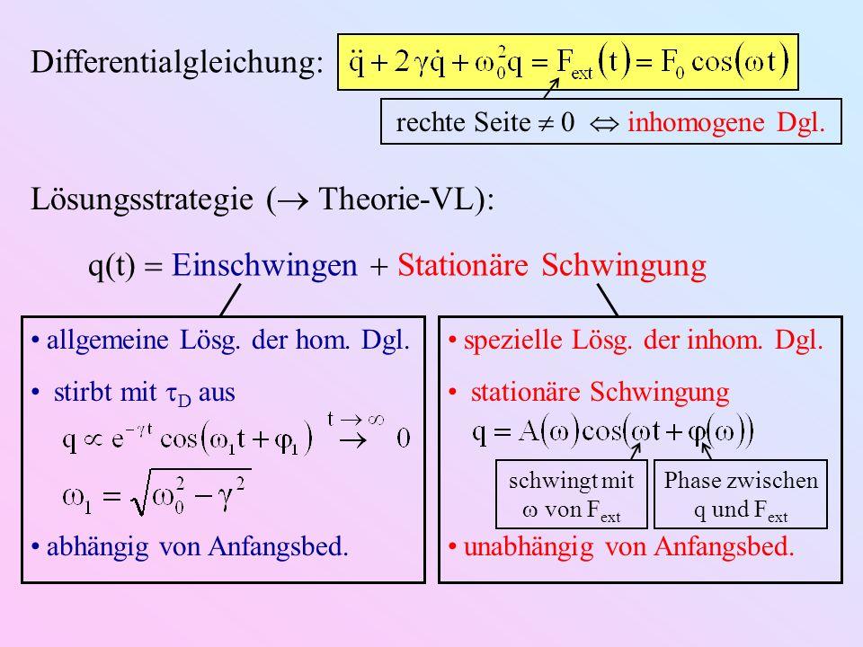 Differentialgleichung: Lösungsstrategie ( Theorie-VL): q(t) Einschwingen Stationäre Schwingung rechte Seite 0 inhomogene Dgl.