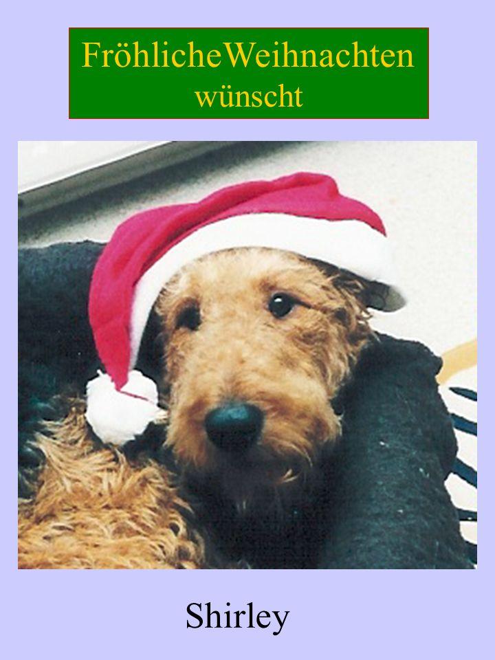 FröhlicheWeihnachten wünscht Shirley