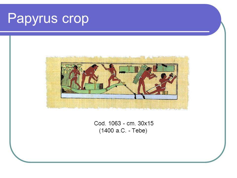 Papyrus crop Cod. 1063 - cm. 30x15 (1400 a.C. - Tebe)
