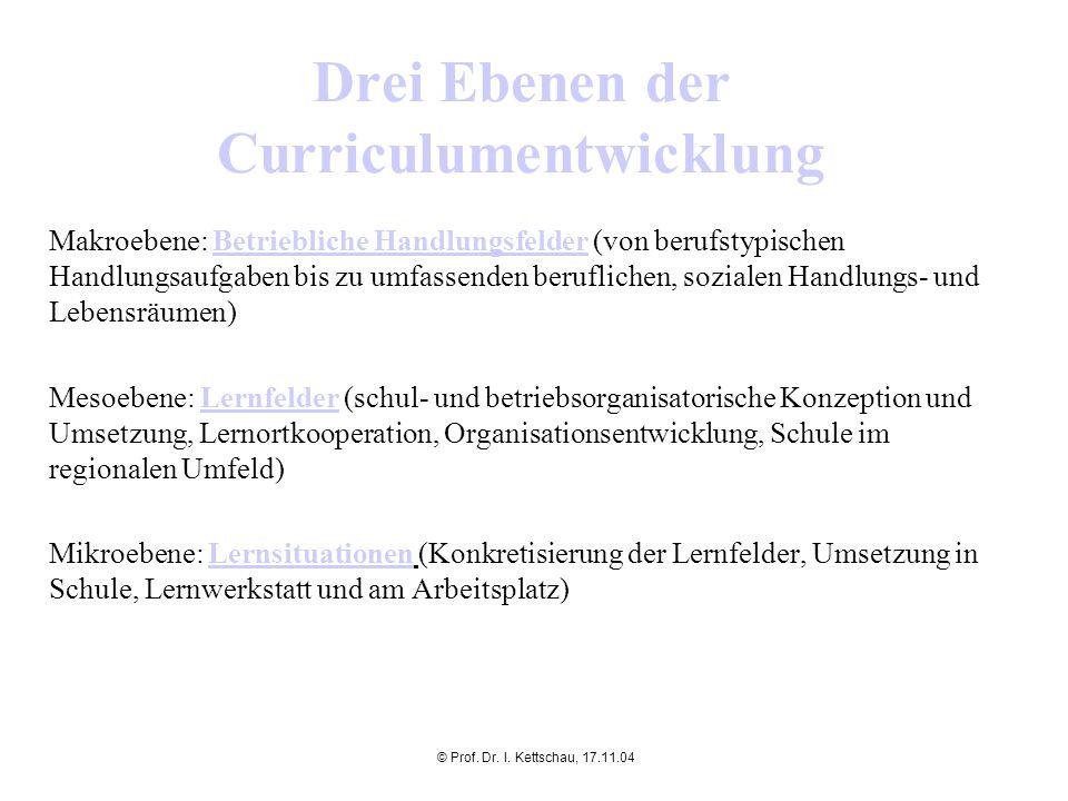 © Prof. Dr. I. Kettschau, 17.11.04 Drei Ebenen der Curriculumentwicklung Makroebene: Betriebliche Handlungsfelder (von berufstypischen Handlungsaufgab