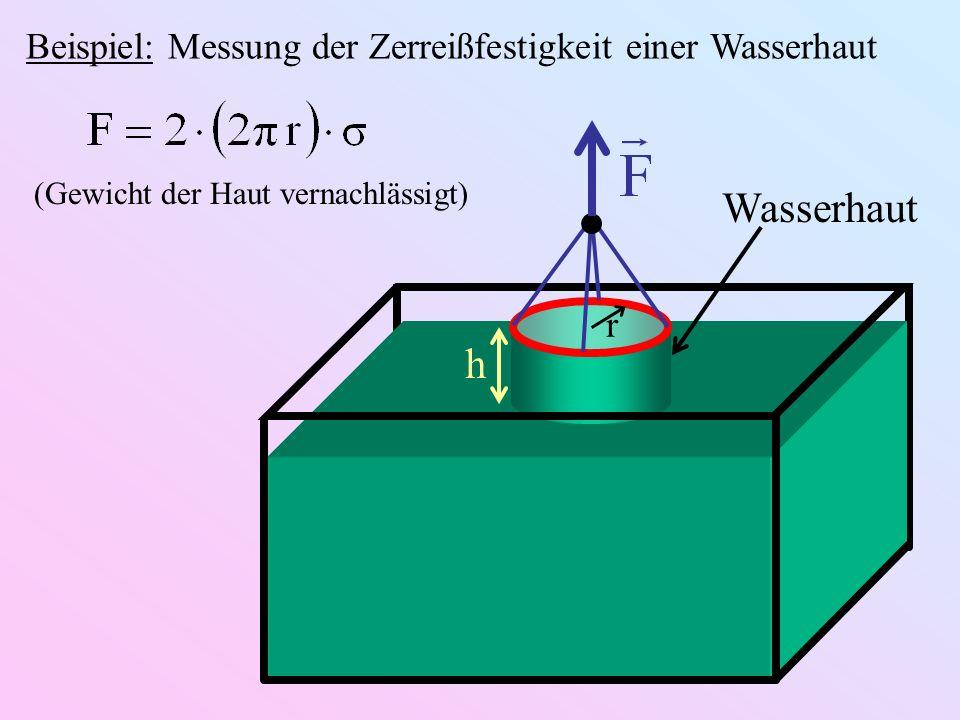 Wasserhaut h r Beispiel: Messung der Zerreißfestigkeit einer Wasserhaut (Gewicht der Haut vernachlässigt)